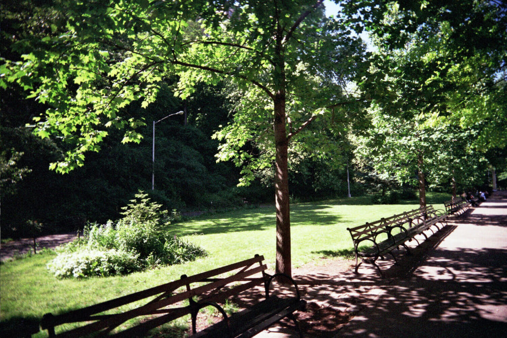 jackie robinson park sugar hill manhattan nyc
